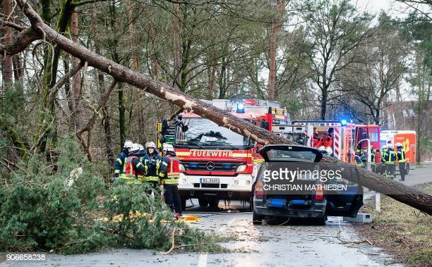 Firefighters and rescue teams stand next to a car on which a tree fell due to heavy storms on January 18 2018 in Bielefeld western Germany Germany...