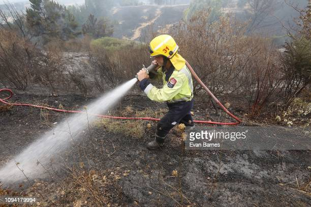 Firefighters battle a blaze as 170 homes were evacuated from the area in the Tasman district February 6, 2019 in Richmond, near Nelson, New Zealand....