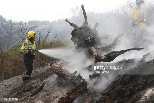 Firefighters battle after a blaze forced the evacuation of residents of 170 homes in the Tasman district February 6 2019 in Richmond near Nelson New...