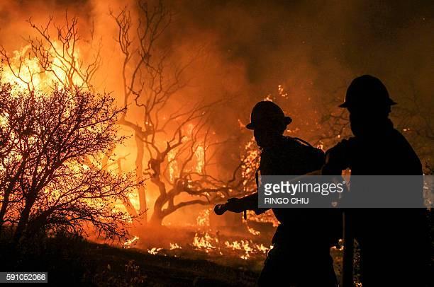 Firefighters battle the Blue Cut wildfire near Cajon Pass north of San Bernardino California on August 16 2016 A rapidly spreading fire raging east...