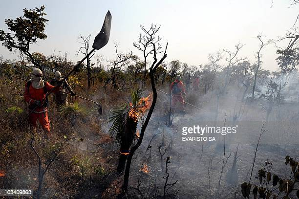 Firefighters combat a fire in the bush around Sobradinho 35 km from Brasilia on August 16 2010 Some 12000 fires are burning in Brazil on Monday with...