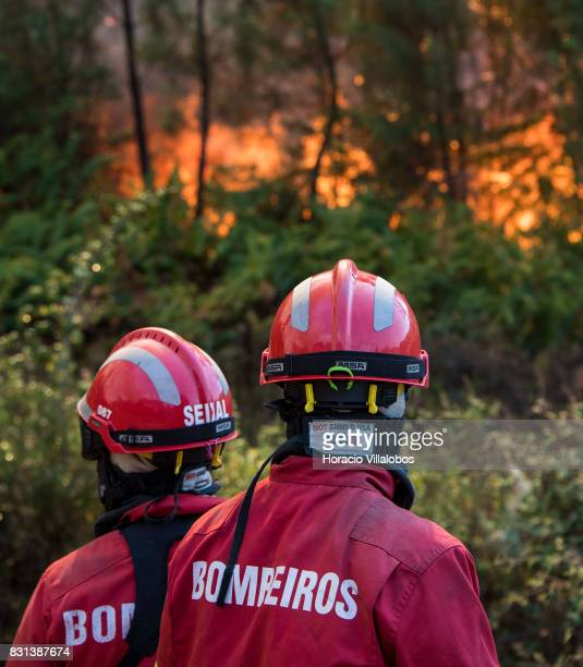 Firefighters combat flames at a forest fire on August 14 2017 in Vila de Rei Portugal More than a thousand firefighters and military personnel have...