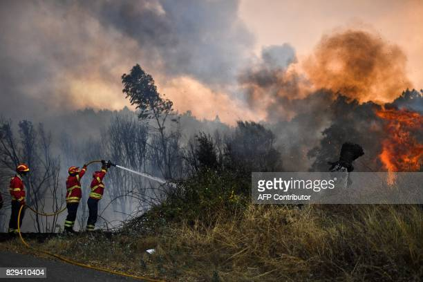 Firefighters douse flames close to the village of Pucarica in Abrantes on August 10 2017 Nearly 3000 firefighters battled 80 wildfires raging across...