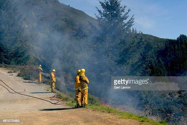 Firefighters extinguising a wildland fire