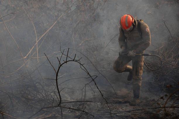 BRA: Fire Continues In The Brazilian Pantanal