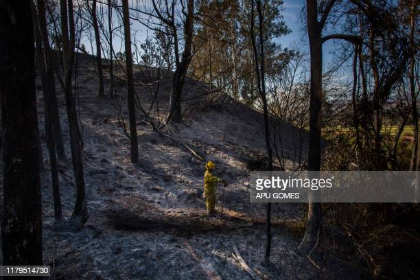 Firefighters from Napa Valley walk around ashes to control hotspots of the Maria Fire in Santa Paula Ventura County California on November 02 2019
