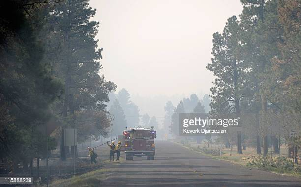 Firefighters from Surprise Arizona work to put out hot spots during a mop up operation on June 11 2011 in Greer Arizona A red flag warning has been...