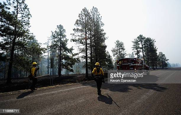 Firefighters from Surprise Fire Departement in Arizona guide their engine as they work to put out hot spots on June 11 2011 in Greer Arizona A red...