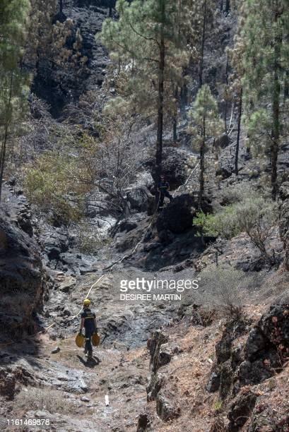 Firefighters inspect a forest affected by wildfires in Gran Canaria on the Spanish Canary Islands on August 13 2019 Firefighters have managed to...