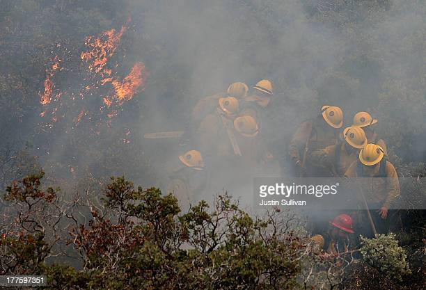 Firefighters move away from a burning manzanita bush as they battle the Rim Fire on August 24, 2013 in Yosemite National Park, California. The Rim...