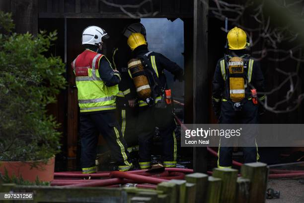 Firefighters move equipment and survey the damage after a fire destroyed a number of buildings at London Zoo on December 23 2017 in London England...