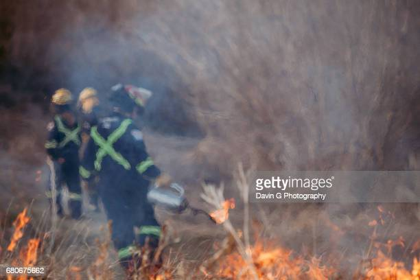 firefighters - heat haze stock pictures, royalty-free photos & images