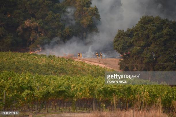 Firefighters protect a vineyard in Santa Rosa California October 11 2017 as the toll from Northern California wildfires continues to grow More than...
