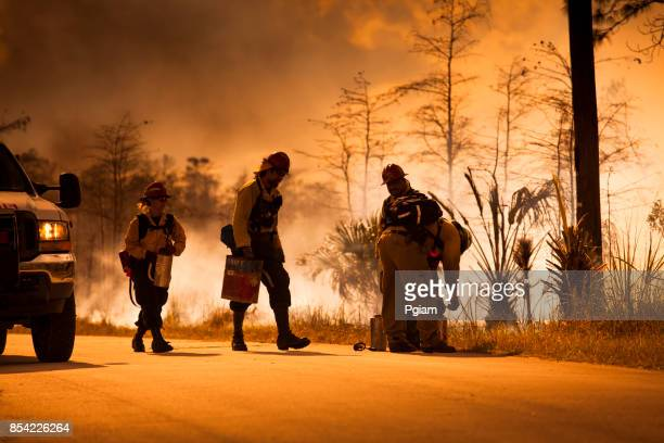 firefighters respond to a forest fire - wildfire stock photos and pictures