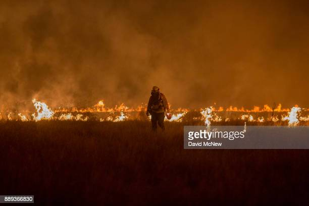 Firefighters set a backfire to make progress against the Thomas Fire before the winds return with the daylight near Lake Casitas on December 9 2017...