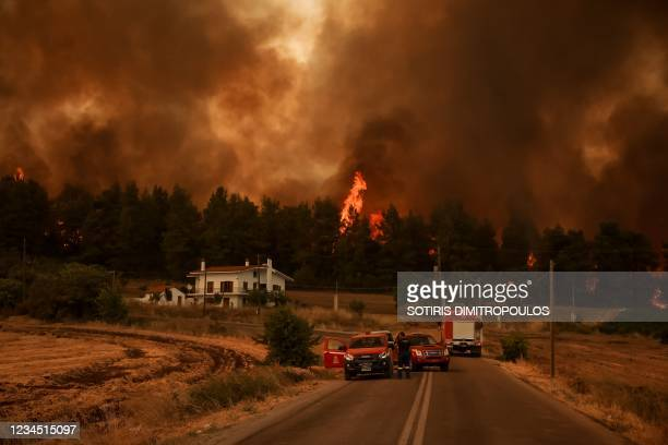 Firefighters stand on a road as flames rise from a forest in the background in the village of Kyrynthos, in the north of Evia Island on August 6,...