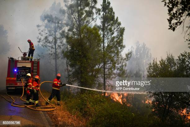 Firefighters tackle a wildfire in Sardoal on August 17 2017 / AFP PHOTO / PATRICIA DE MELO MOREIRA / The erroneous mention[s] appearing in the...