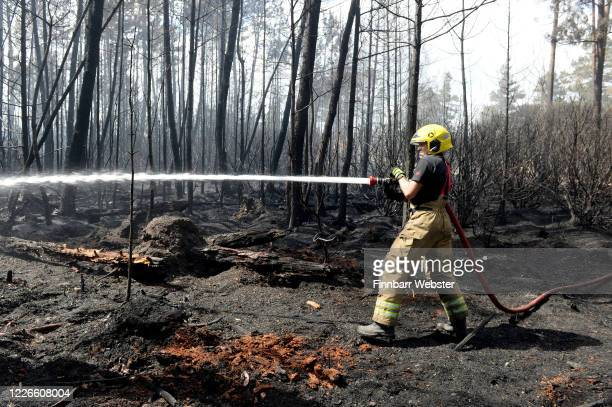 Firefighters tackle the blaze at Wareham Forest on May 23, 2020 in Wareham, England.