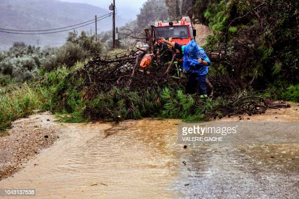 Firefighters try to clear a road from an uprooted tree after a thunder storm near Corinth on September 29 2018