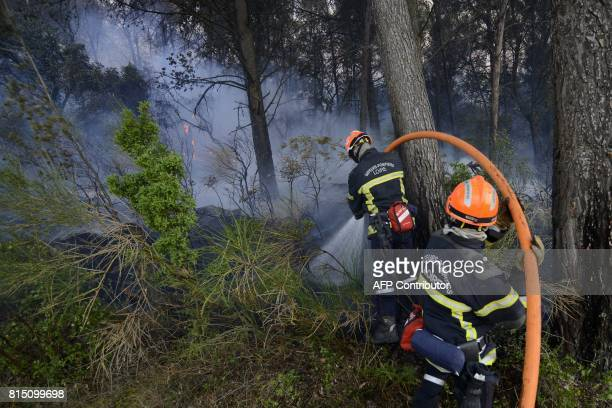 Firefighters try to extinguish a forest fire in Saint Cannat near Aix en Provence in the Bouches du Rhone region More than 350 hectares have burned...
