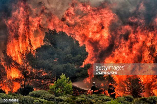 TOPSHOT Firefighters try to extinguish flames during a wildfire at the village of Kineta near Athens on July 24 2018 Raging wildfires killed 74...
