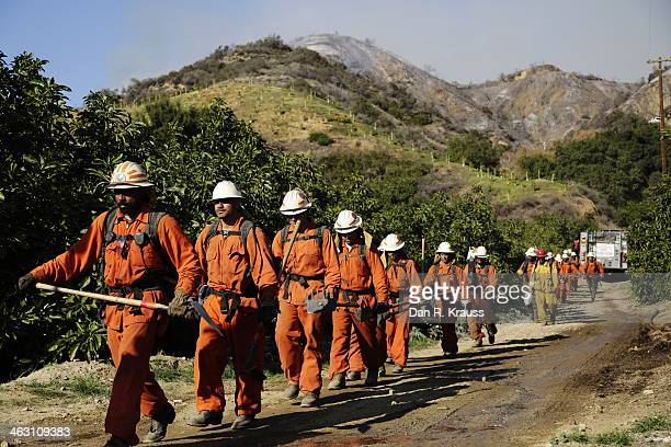 Firefighters walk down from the hills as wildfires burn through the foothills on January 16 2014 in Azusa California Authorities have stated that...