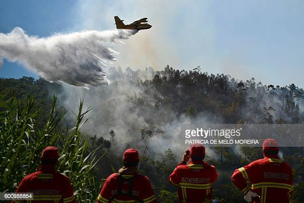 TOPSHOT Firefighters watch a firefighter plane trying to extinguish a wildfire at Monchique Algarve southern of Portugal on September 9 2016 / AFP /...