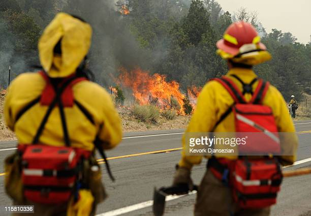 Firefighters watch flames grow after setting a backburn on Highway 191 in an attempt to control a raging wildfire on June 10 2011 in Nutrioso Arizona...