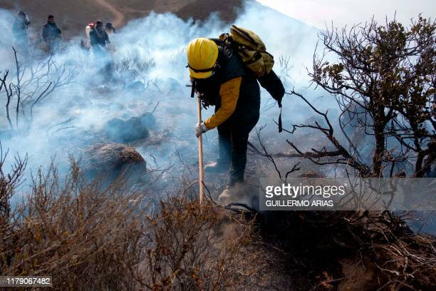 Firefighters work on a brush fire fueled by Santa Ana winds in Plaza Santa Maria south Rosarito Beach in Baja California state Mexico on October 30...