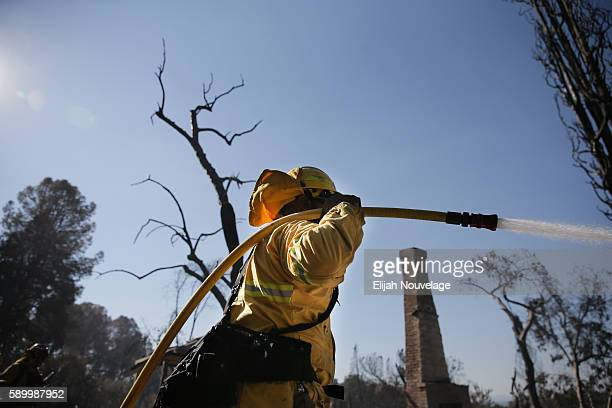 Firefighters work to put out lingering hot spots left by the Clayton Fire on August 15 2016 in and around Lower Lake California Gov Jerry Brown...