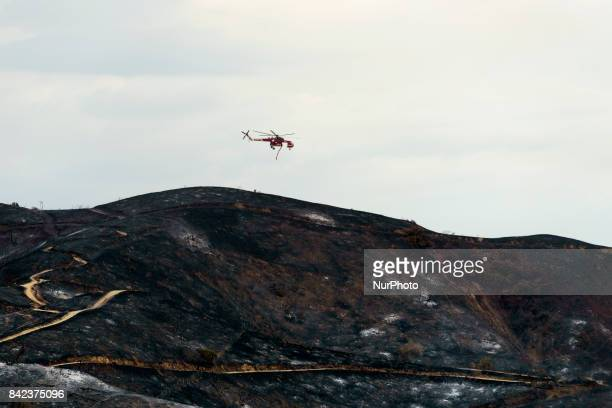 A firefighting helicopter flies over burned hills during the La Tuna fire in Los Angeles California On September 3 2017 Over 1000 firefighters...