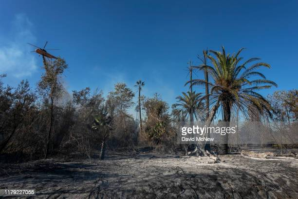 Firefighting helicopter makes a drop near palm trees at the 46 Fire on October 31, 2019 near San Bernardino, California. The National Weather Service...