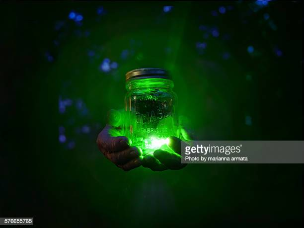 fireflies - fireflies stock pictures, royalty-free photos & images