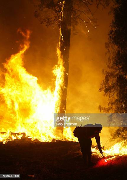 A fireman lights a back burn with a flare as the fire approaches Highway 18 and tries to jump the highway near Crestline on Sunday evening October 26...