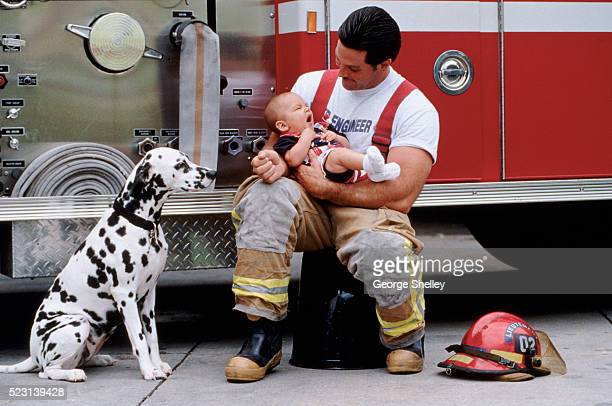 fireman's pride - 動物の行動 ストックフォトと画像