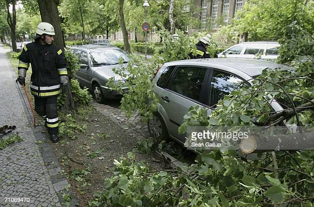 Tree Fell On Car Stock Photos And Pictures Getty Images