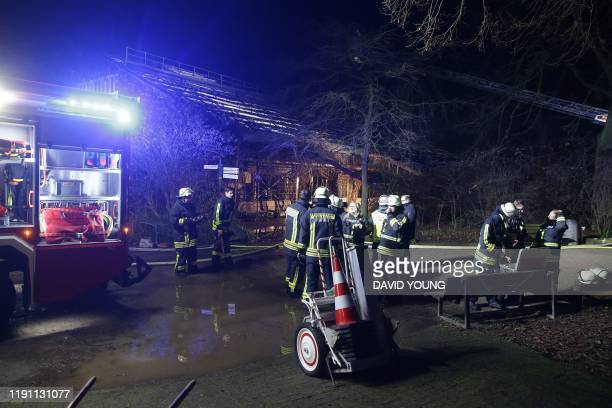Firemen work at the burnedout monkey house of the zoo in Krefeld western Germany on early January 1 2020 Fire ripped through the monkey house at...