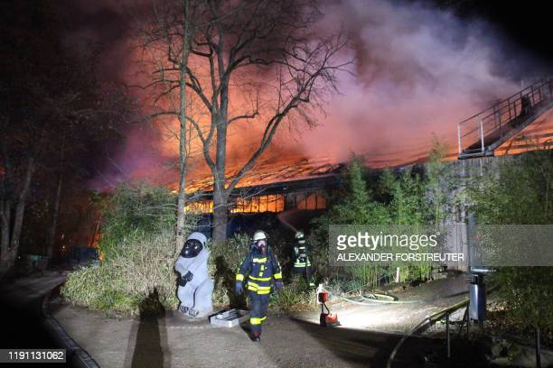 Firemen work at the burning monkey house of the zoo in Krefeld, western Germany, on early January 1, 2020. - Fire ripped through the monkey house at...