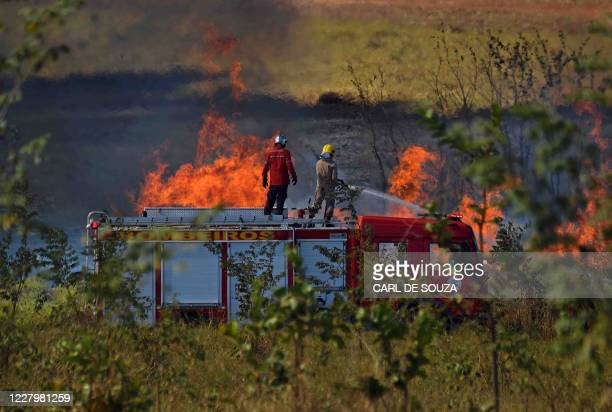 Firemen work to put out a fire close to a field near Sorriso, Mato Grosso State, Brazil, on August 8, 2020.