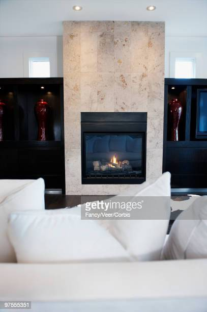 Fireplace in living room of contemporary style home