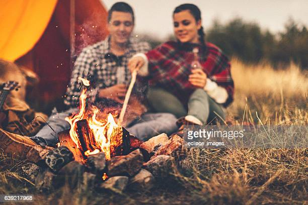 fireplace - bonfire stock photos and pictures