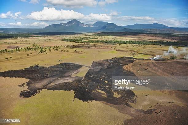 fires destroying extensive areas of vegetation on the gran sabana, venezuela, south america - paisajes de venezuela fotografías e imágenes de stock