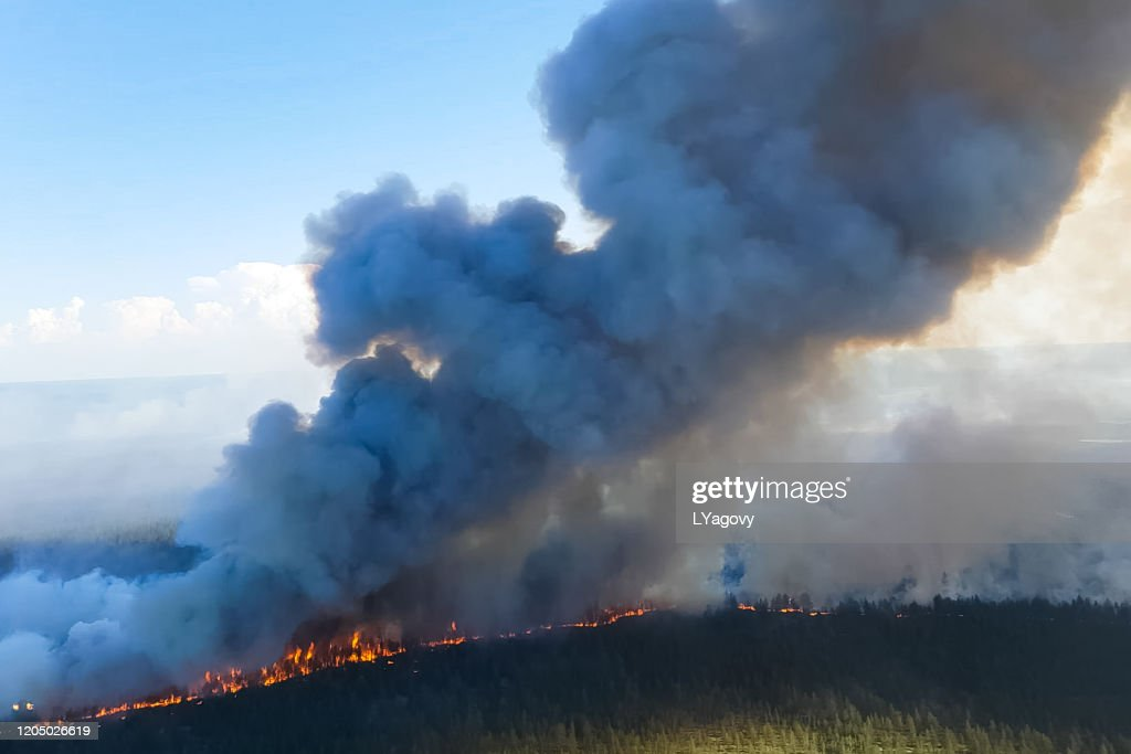 Fires in Russian forest, Transbaikal forest in fire, burning of : Stock Photo