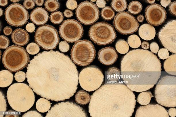 firewood in a woodpile - log stock pictures, royalty-free photos & images