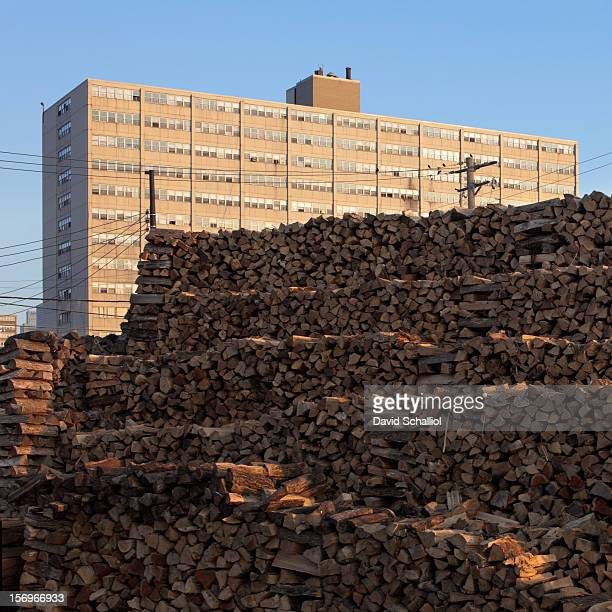 Firewood is piled high in front of a Cabrini Green public housing high rise building