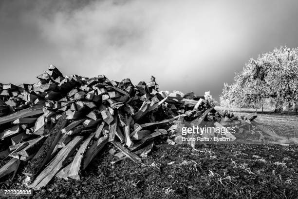 Firewood On Grassy Field Against Sky