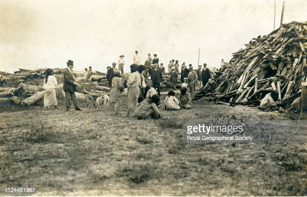 Firewood Rio Paraguay Brazil 1908 Artist Percy Harrison Fawcett