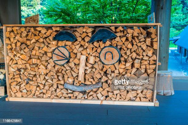 firewood stacked in the form of human smiles. at a corner of a natural learning facility. mikata, fukui, japan - hokuriku region stock photos and pictures
