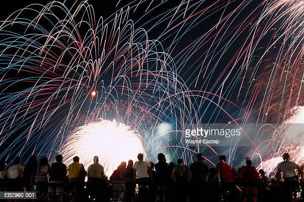 firework display and spectators - 西暦2000年 ストックフォトと画像