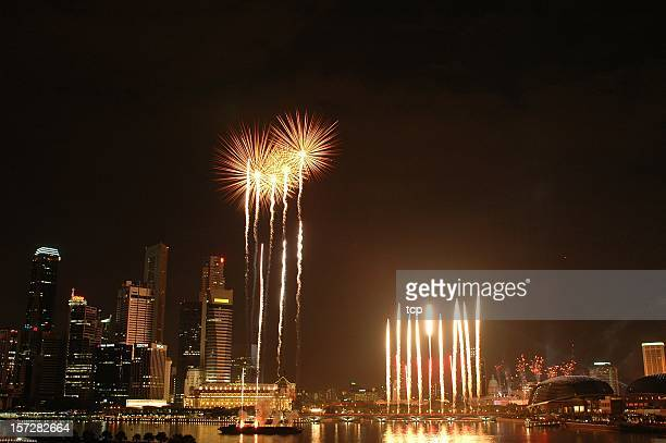 Firework display in Singapore (2005)